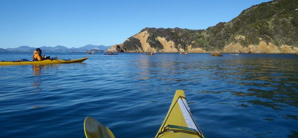 Sea Kayak training courses with OENZ-Outdoor Education New Zealand